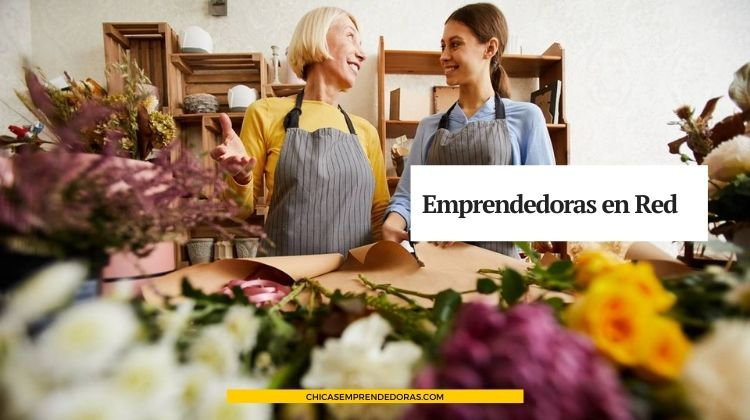 Emprendedoras en Red: Comunidad Virtual de Emprendedoras