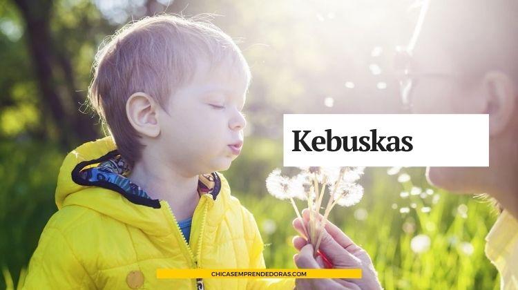 Kebuskas: Encuentre lo que Busca