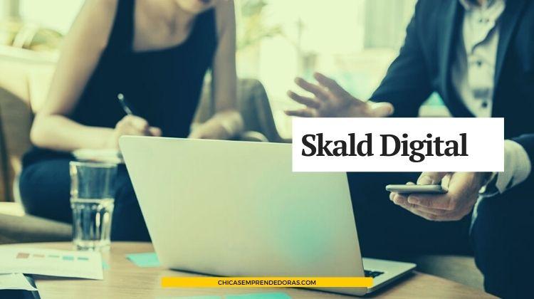 Skald Digital, Soluciones IT