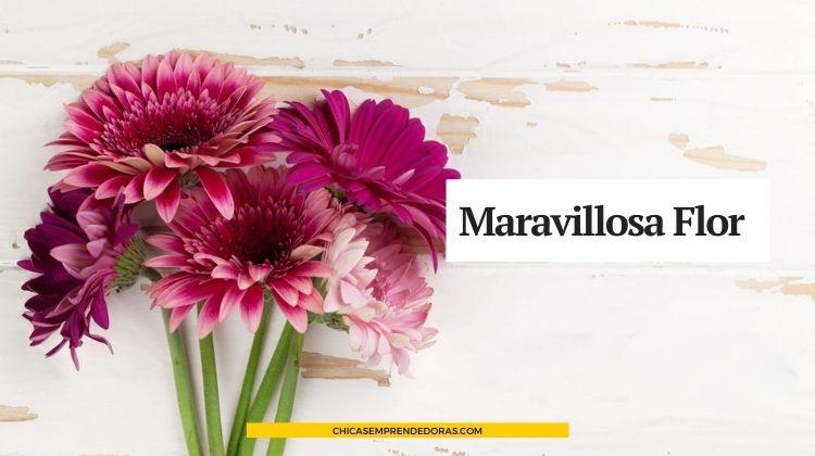 Maravillosa Flor: Florería Online