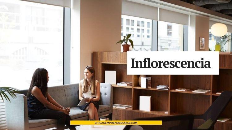 Inflorescencia: Asesoramiento en Imagen Personal y Corporativa
