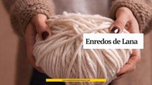 Enredos de Lana: Prendedores, Vinchas, Sombreros y Carteras