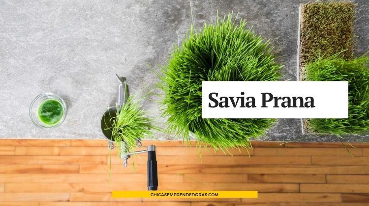 Savia Prana: Brote de Trigo o Wheatgrass