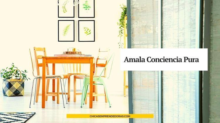 Amala Conciencia Pura: Espacio de Diseño