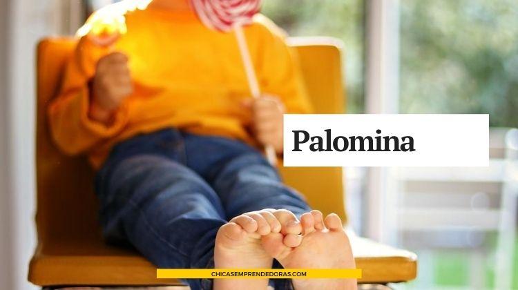Palomina: Sillas de Tela para Bebés