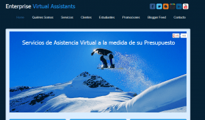 Enterprises Virtual Assistants.