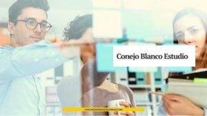 Conejo Blanco Estudio: Asesoría para Mini Negocios Creativos