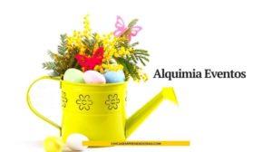 Alquimia Eventos: Eventos + Diseño