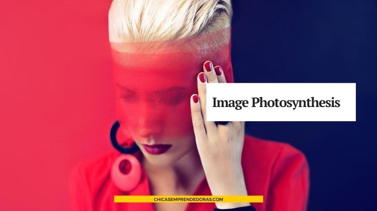 Image Photosynthesis: Photo & Styling