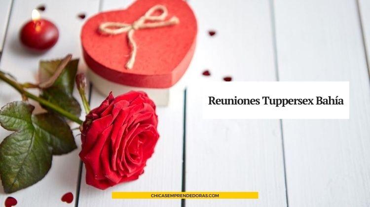 Reuniones Tappersex Bahía: Momentos Divertidos Entre Amigas