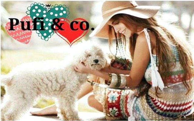 Pufi & Co: Ropa Para Mascotas