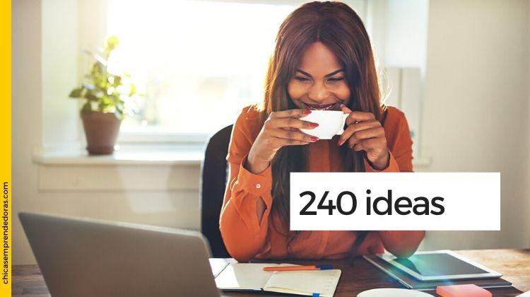 240 Ideas de Negocios.